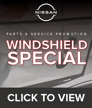 Windshield Special