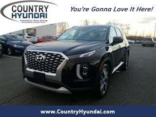 2020 Hyundai Palisade SEL SUV For Sale In Northampton, MA