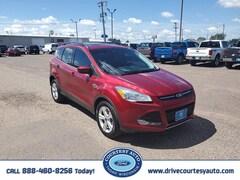 2014 Ford Escape SE SUV For sale near Cadott WI