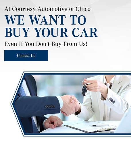 At Courtesy Automotive of Chico We Want To Buy Your Car
