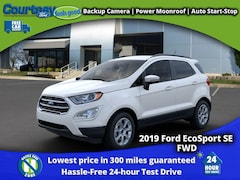2019 Ford EcoSport SE Crossover for sale in Okemos