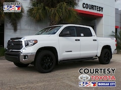 2019 Toyota Tundra SR5 4.6L V8 Special Edition Truck CrewMax