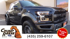 Used 2019 Ford F-150 Raptor Truck for sale in Moab, UT