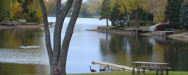 Swingers in island lake illinois