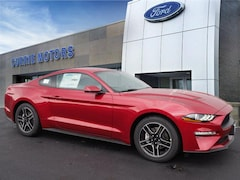 2020 Ford Mustang Ecoboost Premium EcoBoost Premium  Fastback