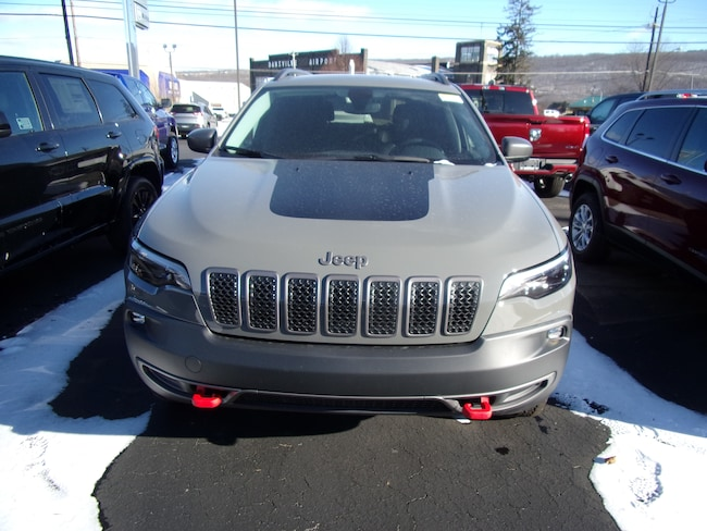 New 2019 Jeep Cherokee TRAILHAWK 4X4 Sport Utility For Sale in Dansville, NY