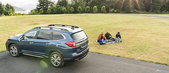 Family has a Picnic on the Grass next to Blue Subaru SUV