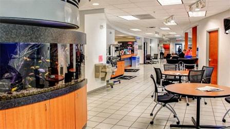 Honda Dealership Dallas Tx >> David McDavid Honda of Frisco   New Honda dealership in Frisco, TX 75034