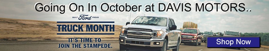 Ford Truck Month!