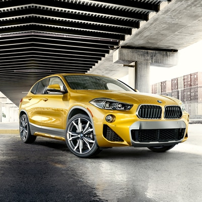 BMW X2 Trims