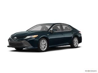 New 2019 Toyota Camry Hybrid Hybrid XLE Sedan Torrance, CA