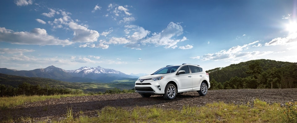 2017 Toyota RAV4 SUV for Sale in Mamaroneck, NY.jpg