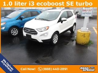 New 2018 Ford EcoSport SE SUV N5422 in West Branch, MI