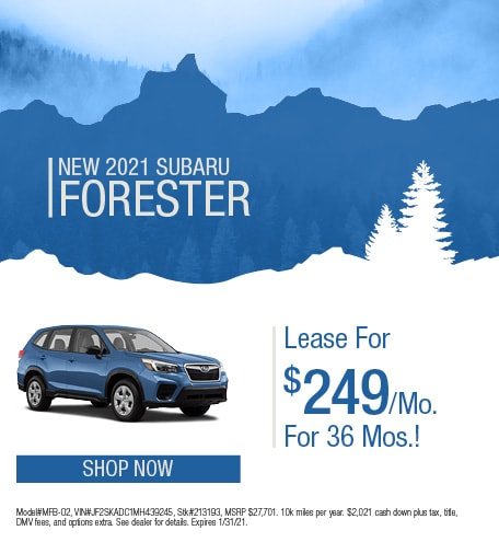 January | 2021 Forester