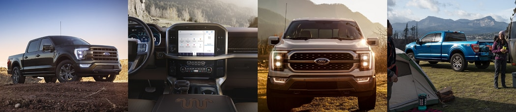 2020 Ford F-150 Interior and Exterior Pictures