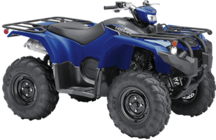 2019 YAMAHA Kodiak 450 EPS