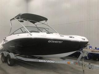 2010 SEA-DOO/BRP CHALLENGER 210