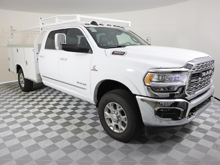 2020 Ram 3500 Chassis Cab 3500 LIMITED CREW CAB CHASSIS 4X4 60 CA Crew Cab