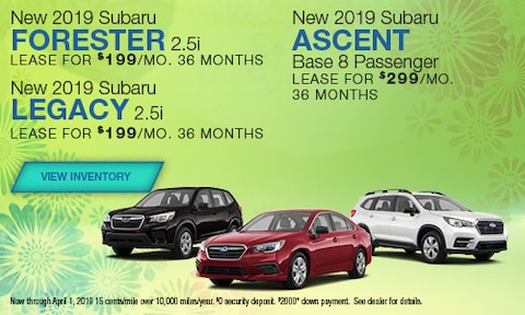 New 2019 Subaru Forester, Legacy and Accent