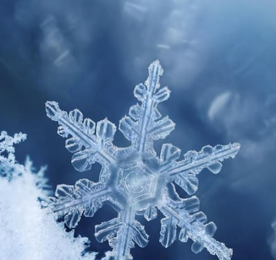 Winter Maintenance Special!