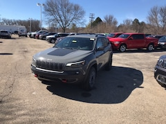 New 2019 Jeep Cherokee TRAILHAWK ELITE 4X4 Sport Utility for Sale in Madison, WI, at Don Miller Dodge Chrysler Jeep Ram