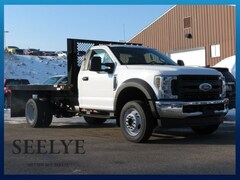 New 2019 Ford F-450SD XL Cab/Chassis for sale in Kalamazoo, MI