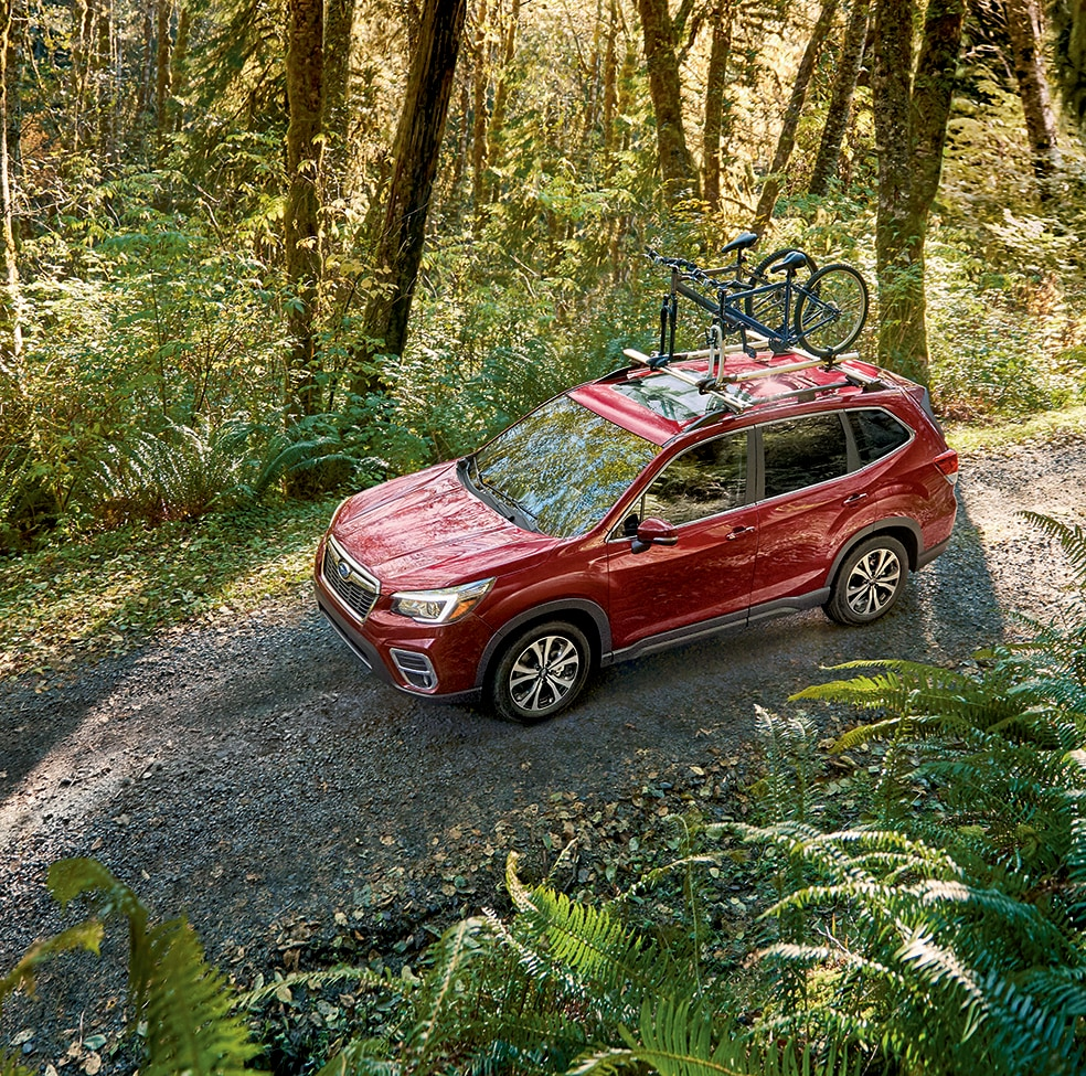 2019 Subaru Forester Stability & Traction