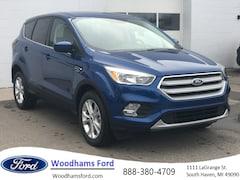 2019 Ford Escape for sale in South Haven, MI