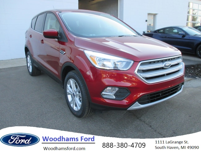 2019 Ford Escape SE SUV in South Haven, MI