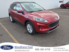 New 2020 Ford Escape for sale in South Haven, MI