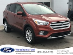 New 2019 Ford Escape for sale in South Haven, MI