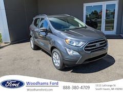 New 2020 Ford EcoSport for sale in South Haven, MI