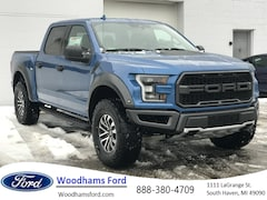2019 Ford F-150 Raptor Truck for sale in South Haven, MI