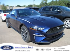 New 2019 Ford Mustang for sale in South Haven, MI