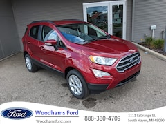 Used 2018 Ford EcoSport for sale in South Haven, MI