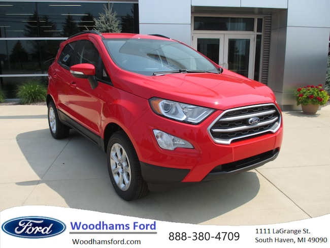 2018 Ford EcoSport SE Crossover in South Haven, MI