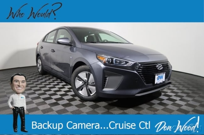 New 2019 Hyundai Ioniq Hybrid Blue Hatchback for sale in Athens, OH