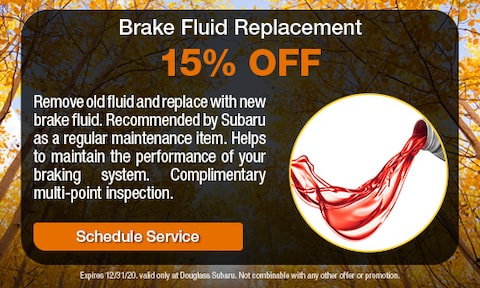 Brake Fluid Replacement Special