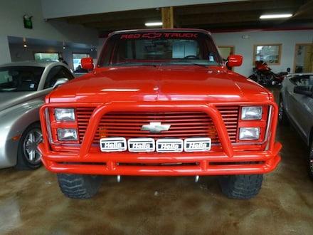 1981 Chevrolet 1500 Pickup Truck