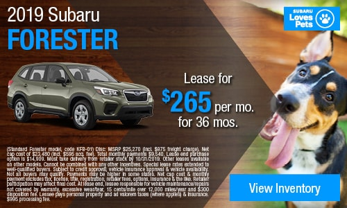 October 2019 Forester Special