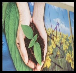 Ecofriendly Artwork Photo, Toyota Dealers, Michigan - Dunning Toyota