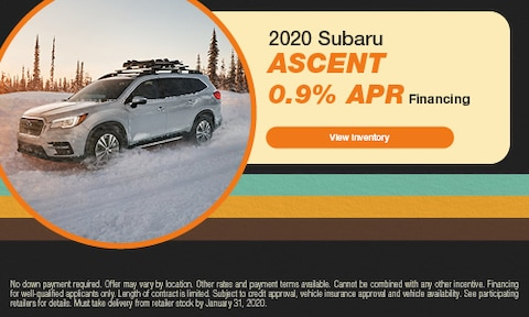 January Ascent Offer