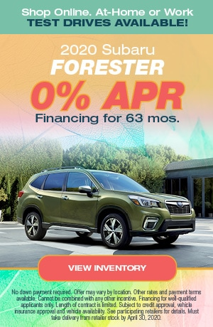 April Forester Offer
