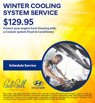 WINTER COOLING SYSTEM SERVICE