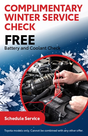 Complimentary Winter Service Check