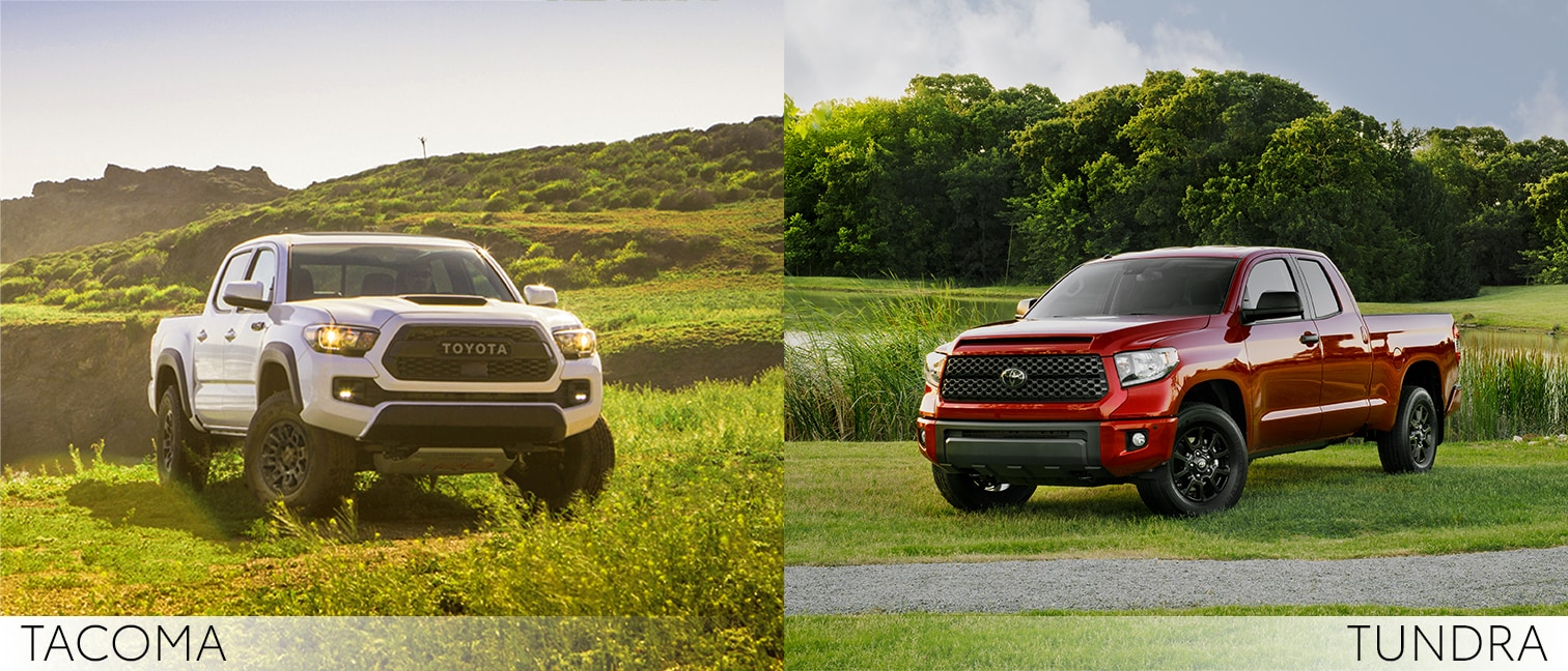 comparison of the tundra and tacoma body styles