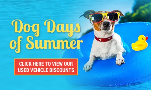 July | Dog Days