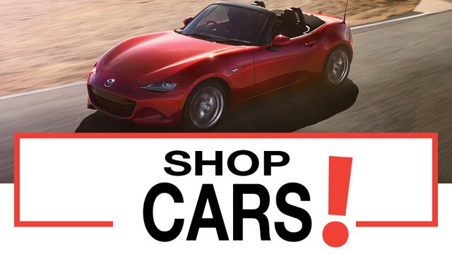 Dyer Chevrolet Fort Pierce >> Dyer Auto Group   New Kia, Subaru, Chevrolet, Mazda Dealership in , FL
