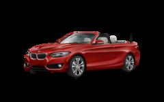 2018 BMW 2 Series 230i Convertible [4LR, ZCV, 2L9]