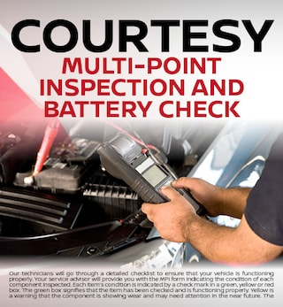 Courtesy Multi-Point Inspection and Battery Check